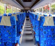 Coral Sun Bus 1