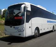 Coral Sun Bus 4